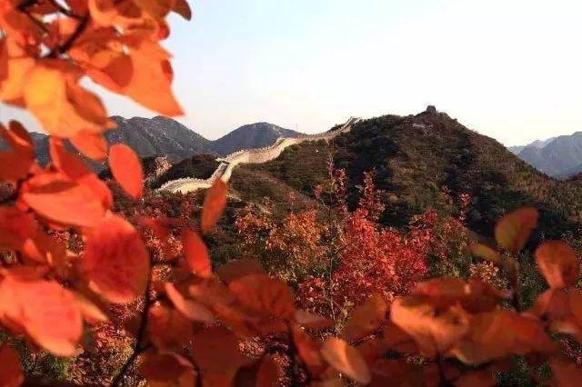 公园主要景区有红叶岭风景区,青龙谷风景区,丁香谷风景区,石峡风景区.